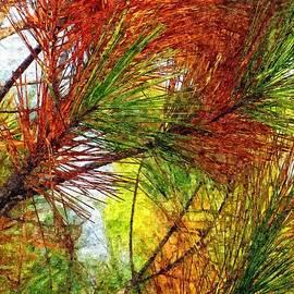 David Dehner - Whispering Pines