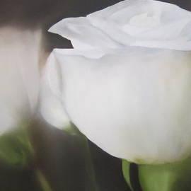 Maro Kirby - Whispers of White
