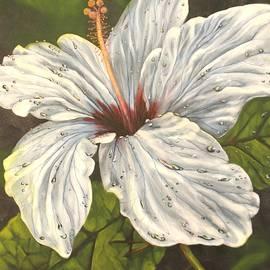 Tamara Kulish - White Hibiscus