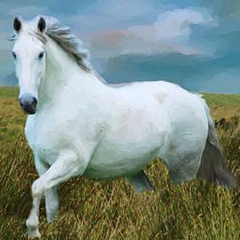 EricaMaxine  Price - White Horse