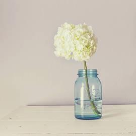 Kim Hojnacki - White Hydrangea