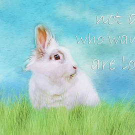 Darren Fisher - White Rabbit