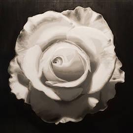 Jesse Waugh - White Rose