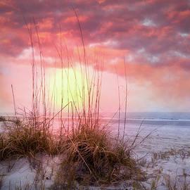 Debra and Dave Vanderlaan - White Sands on the Dunes