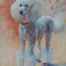 Ann Sheltz - White Standard Poodle