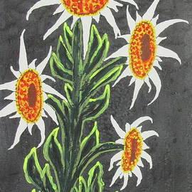 Jeffrey Koss - White Sunflowers