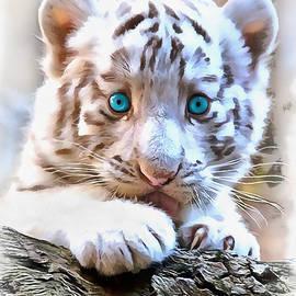 Sergey Lukashin - White tiger cub