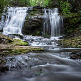 Beth Anthony - Whiteoak Creek Falls
