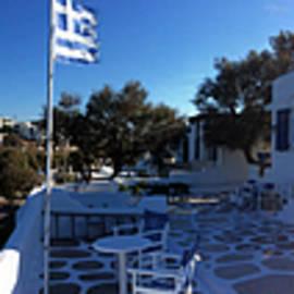Colette V Hera  Guggenheim  - Wild Beauty Paros Island