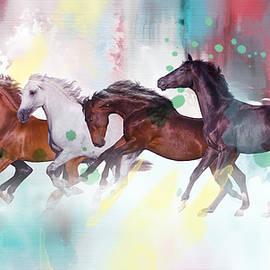 wild horse  - Mark Ashkenazi