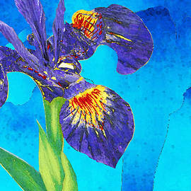 Sharon Cummings - Wild Iris Art by Sharon Cummings
