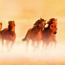 Valerie Anne Kelly - Wild Mustangs on the run