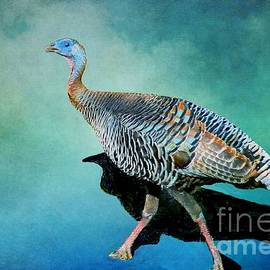 Janette Boyd - Wild Turkey Season