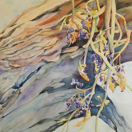 Sharon Nelson-Bianco - Wild Woodland Grapes
