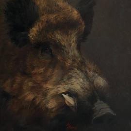 Attila Meszlenyi - Wildboar Portrait