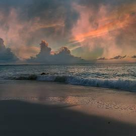 Wilderness Ocean - Betsy C  Knapp