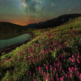 Mike Berenson - Wildflower Milky Way Reflection