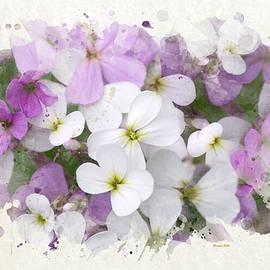 Christina Rollo - Wildflower Watercolor Art