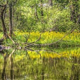 Debra and Dave Vanderlaan - Wildflowers on the River