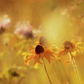 Shawn Einerson - Wildflowers