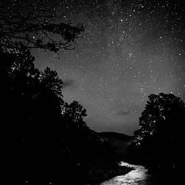 Thomas R Fletcher - Williams River Starlight and Fireflies
