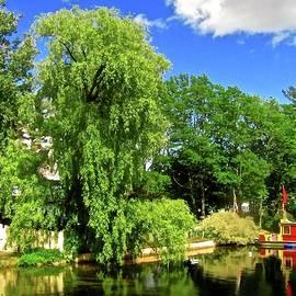 Elizabeth Tillar - Willow Tree Dock