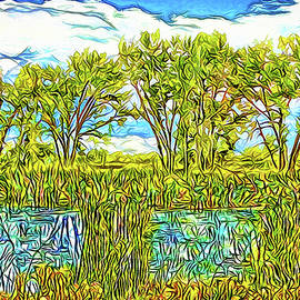 Joel Bruce Wallach - Wind Caresses Pond - Lake Reflections In Boulder County Colorado