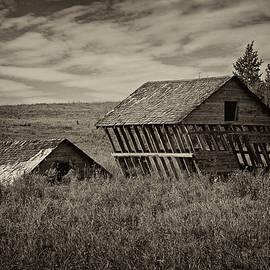 Inge Riis McDonald - Windblown barns - 365-113