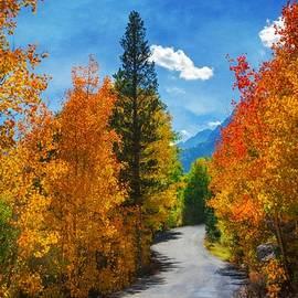 Lynn Bauer - Winding Autumn Road
