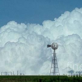 Janette Boyd - Windmills in Panhandle of Texas