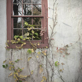 David Rucker - Window
