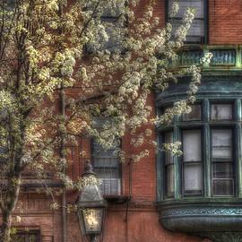 Joann Vitali - Windows of Back Bay - Boston Architecture
