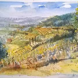 Lorand Sipos - Wine region landscape