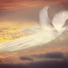 Jenn Teel - Wings of Hope