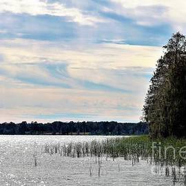 Diann Fisher - Winter at Lake Hancock