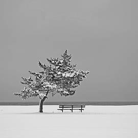 Karol Livote - Winter At The Beach
