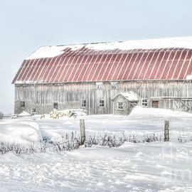 Kathy Franklin - Winter Barn