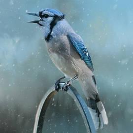 Cathy Kovarik - Winter Blue Jay Square