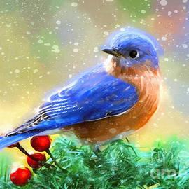 Tina LeCour - Winter Bluebird