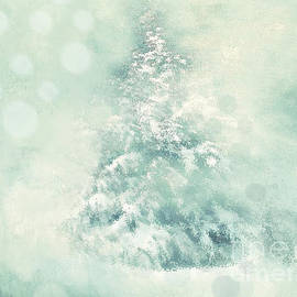 Anita Faye - Winter Blues