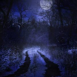 Chris Daugherty - Winter Blues