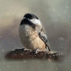 Cathy Kovarik - Winter Chicadee