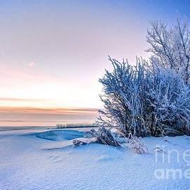 DJ MacIsaac - Dawn on a Prairie Winter