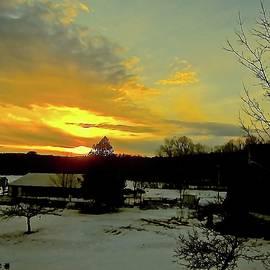 Elizabeth Tillar - Winter Evening Light 2
