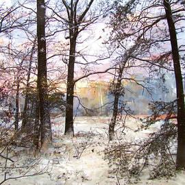 John Rivera - Winter Forest