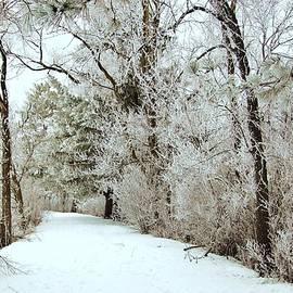 Robert Coffey - Winter Frosting