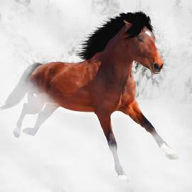 Davandra Cribbie - Winter Gallop