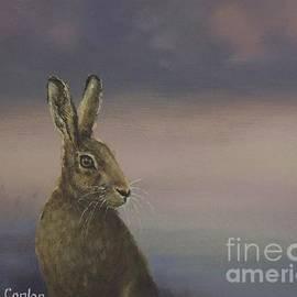 Sean Conlon - Winter Hare