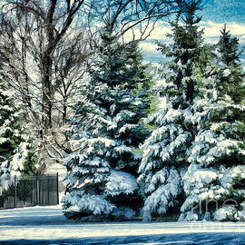 Judy Palkimas - Winter In New England