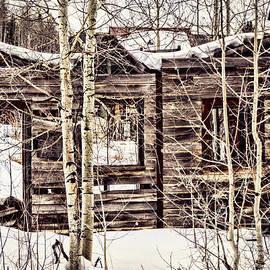 Janice Rae Pariza - Winter In Rico Colorado